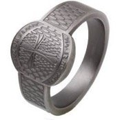 Mens ring in black steel and power design.